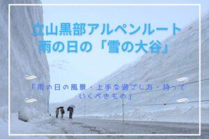 【立山黒部アルペンルート「雪の大谷」】「雨の日の風景・上手な過ごし方・持っていくべきもの」をまとめて紹介