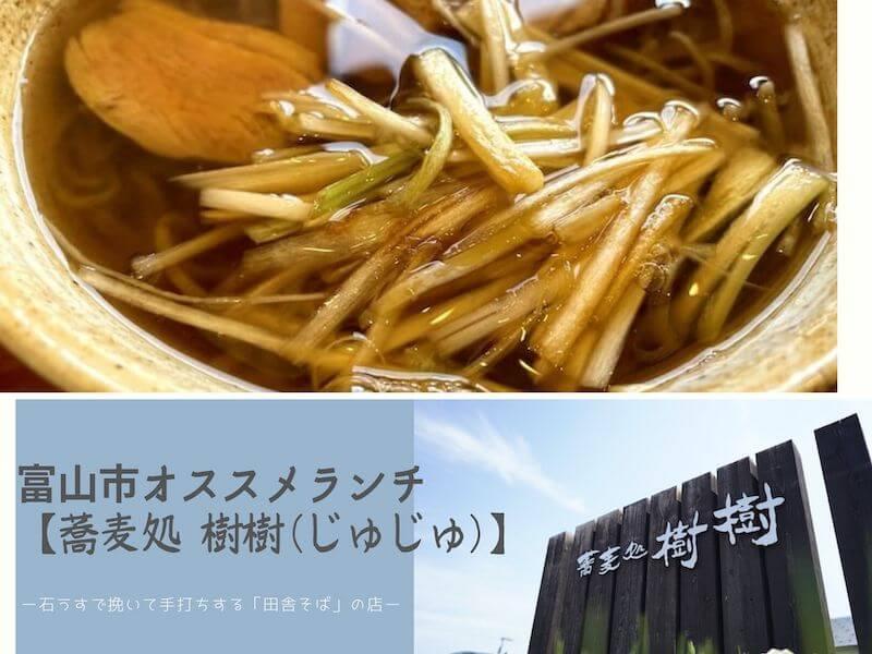 【富山市おすすめランチ】手打ちそば「蕎麦処 樹樹(じゅじゅ)」の「鴨南蛮そば」は富山在住10年以上の私が一度は食べてほしいと思う一杯!!