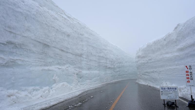 コースの最後「雪の大谷」が一番高い場所